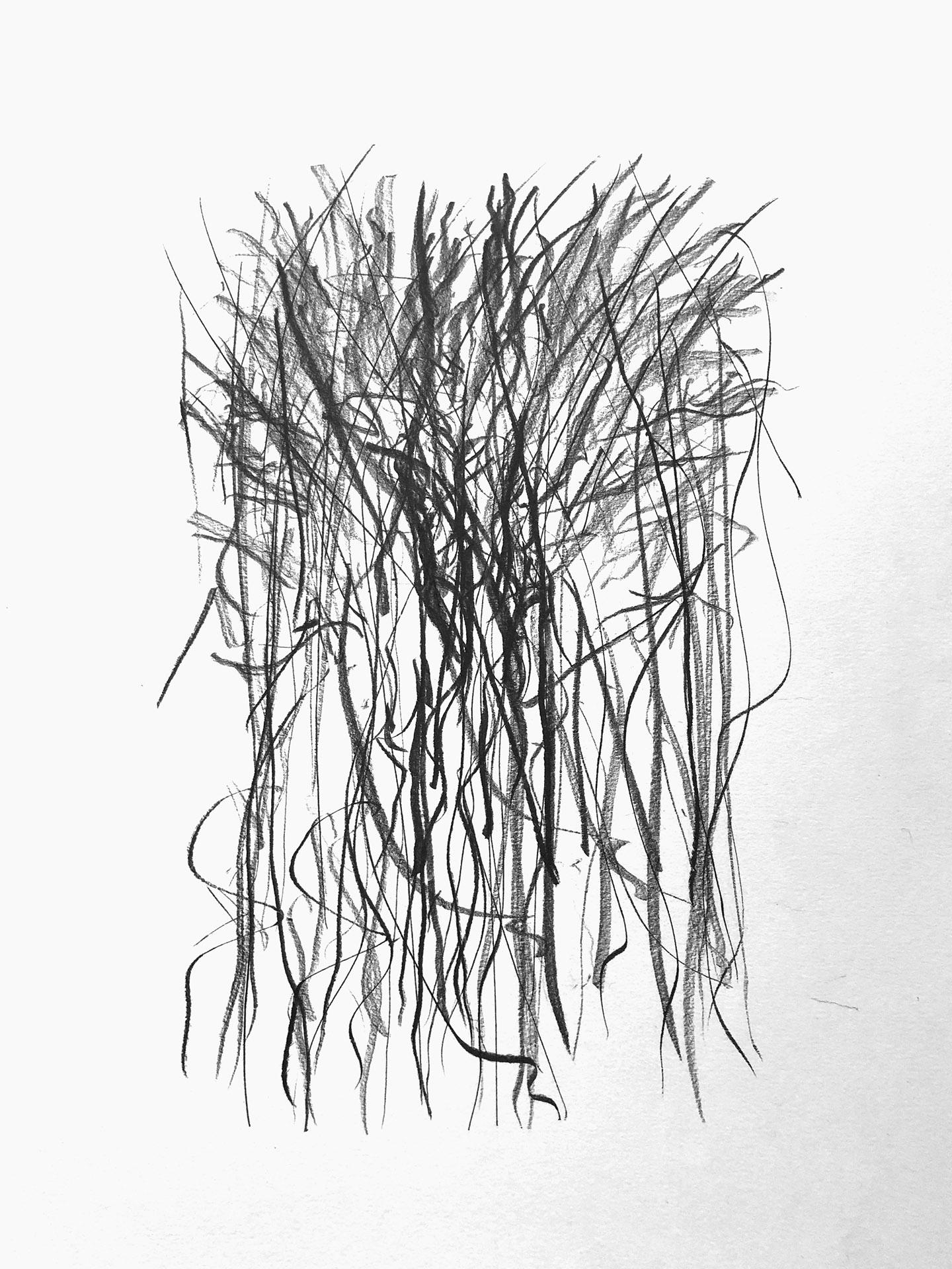 Graphit auf Papier | 2018 | 297 mm x 420 mm